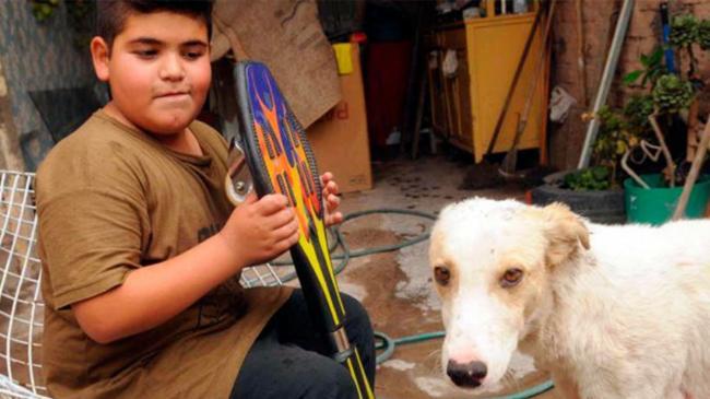 vende-skateboard-per-aiutare-un-cane-randagio