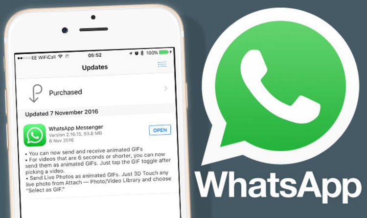 Come inviare gif su Whatsapp: guida per iPhone e iPad