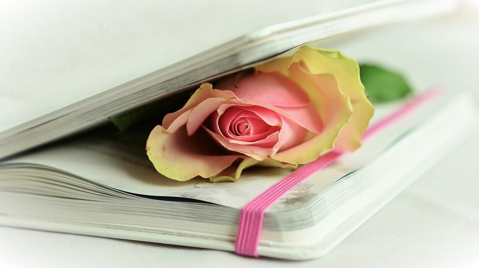 Festa della Donna 2017: le poesie più belle per auguri speciali