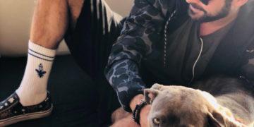Zac Efron adotta un cane che sarebbe stato abbattuto senza un aiuto