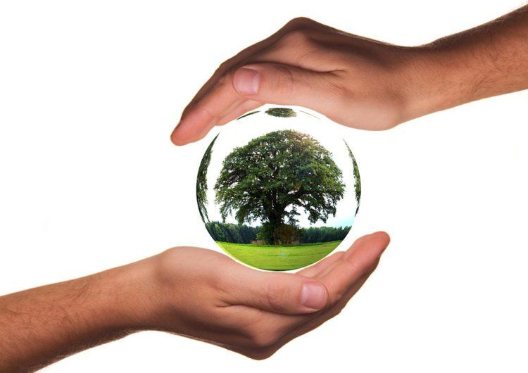 Una casa ecologica con i consigli green