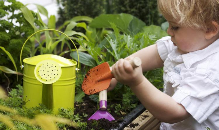 Curare l'orto in casa è la nuova terapia della felicità