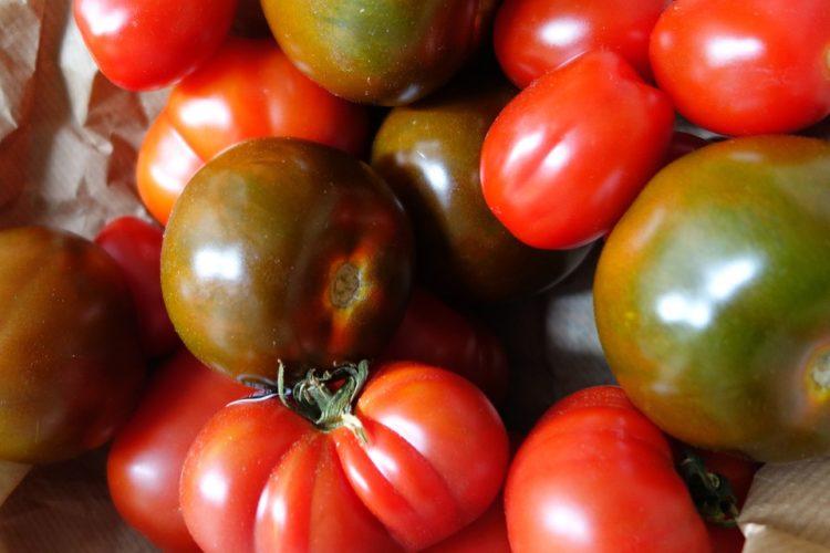 Vi sveliamo tutti i segreti sui pomodori che non conoscete