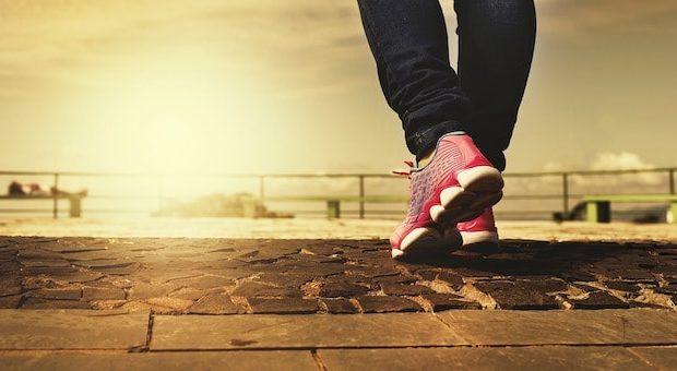 Esercizi e consigli per far allenarsi a casa