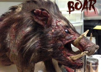 Boar, la vera storia di un cinghiale obeso.
