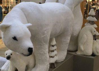 Esposizione orsi polari a luci rosse