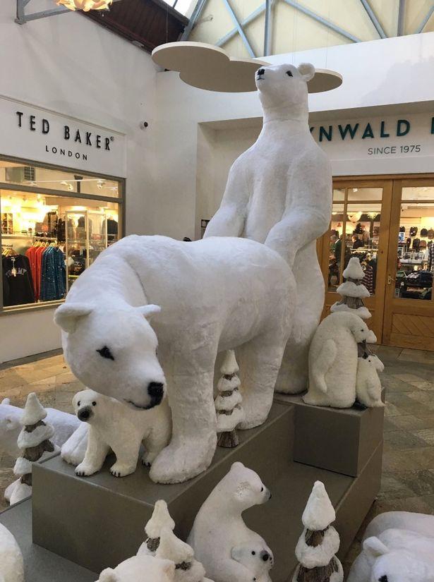 Orsi Polari a Luci Rosse nel Regno Unito