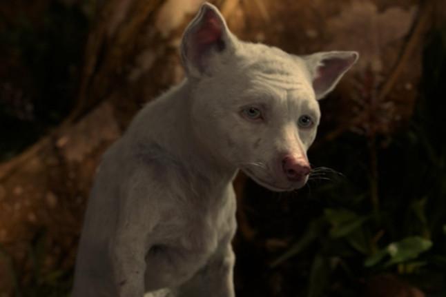 Recensione Mowgli di Netflix: Una storia di bullismo e vendetta