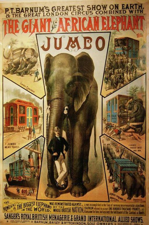 Jumbo: la triste storia del vero Dumbo